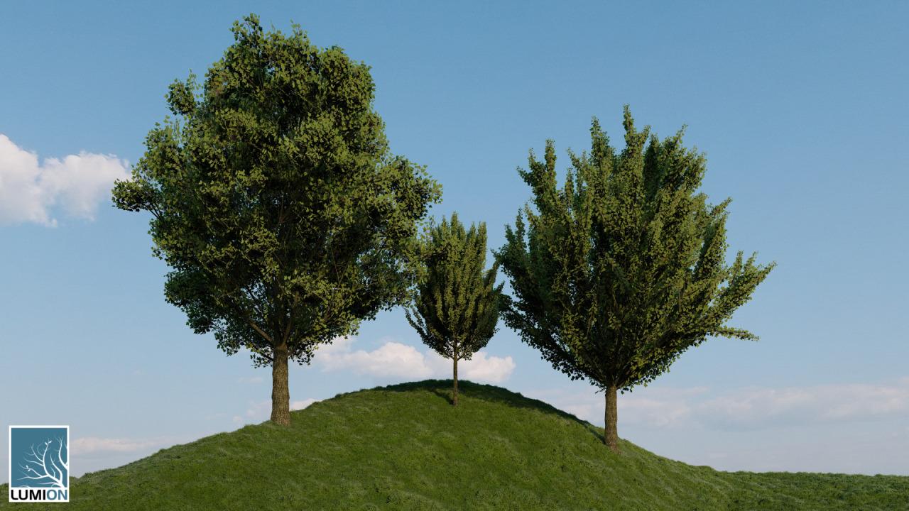Mimariyi Hissetmek: Lumion9'daki YeniObjeler 20