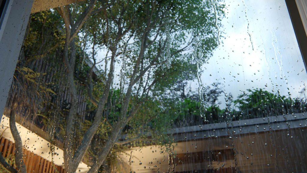 https://lumion.com/wp-content/uploads/2020/11/Raindrops-close-up-2.jpg