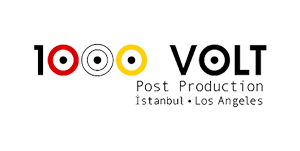 logo 1000 volt